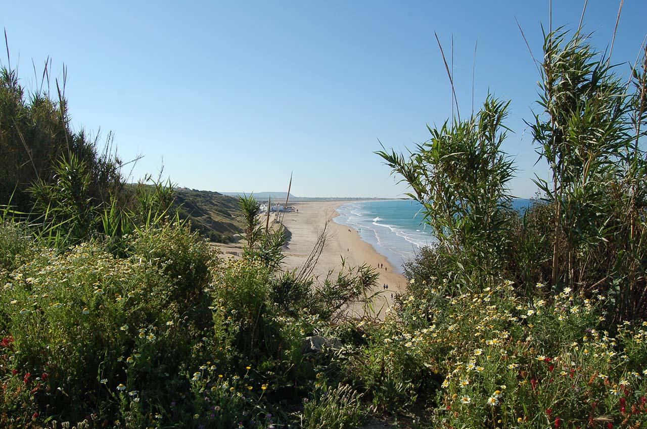 Playa del Roqueo