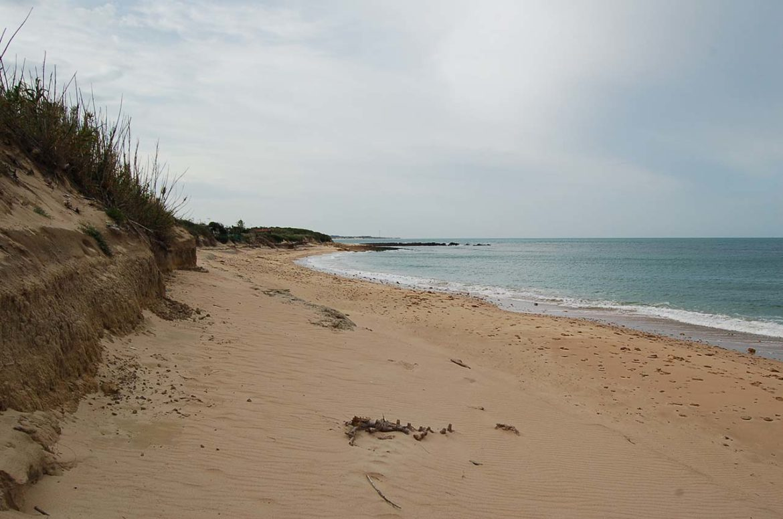 Playa de Peginas