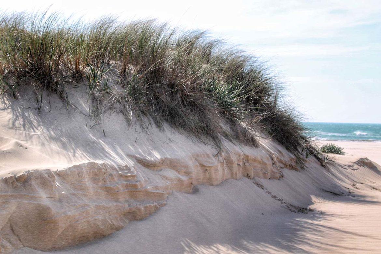 Playa de Cortadura