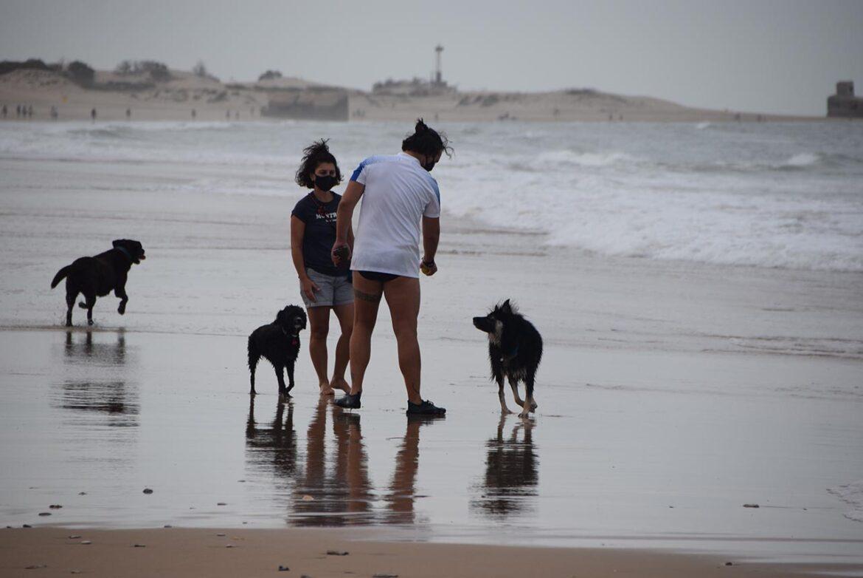 Playa para perros en Camposoto